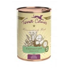 Green Detox - садовый горшочек 400 гр